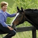 """""""The secret to finding a balanced riding position, is knowing where your seat bones (seat) is positioned. Would you like to know how you can feel where yours are? It's easy!"""" 