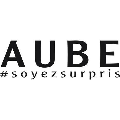 Etablissements touristiques de l'Aube en Champagne - Data.gouv.fr | Aube en Champagne | Scoop.it