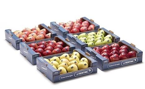 Mele. Gli obiettivi de La Trentina a Fruit Logistica | myfruit - frutta e verdura | Scoop.it