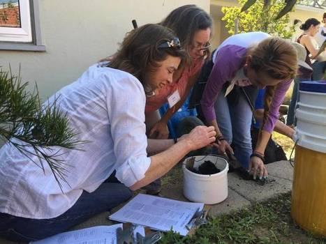 School garden symposium sprouts green ideas for teachers, students | School Gardening Resources | Scoop.it
