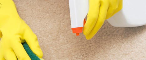 Why Is a Steam House Cleaning Service Beneficial for Your Carpets? - Sweet Home Maintenance Inc   House and Upholstery Cleaning Service   Scoop.it