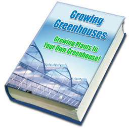 Do You Want To Build Your Own Greenhouse? | Build you own Greenhouse | Scoop.it