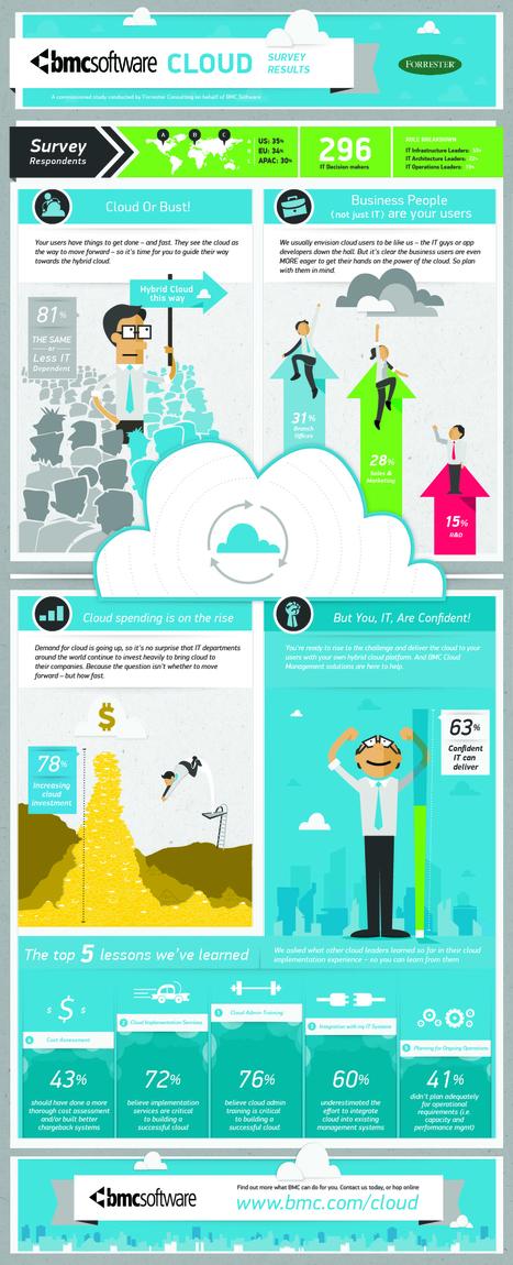 Lessons from Cloud Pioneers | Cloud Computing Blog | Cloud IT | Scoop.it
