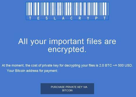 Les pirates s'excusent et livrent la clef de leur virus | Chroniques libelluliennes | Scoop.it