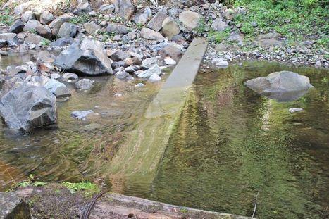Watershed dam project to boost salmon habitat - Daily Astorian | Fish Habitat | Scoop.it
