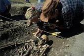 Die aus dem Süden kamen | World Neolithic | Scoop.it