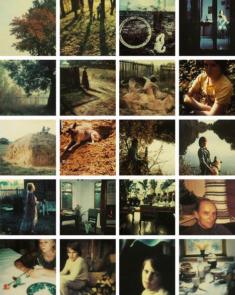 Poemas del río Wang: Tarkovsky's Polaroids / Las Polaroid de Tarkovsky | Arte y Cultura en circulación | Scoop.it