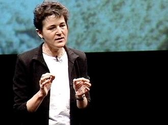 Deborah Gordon fala sobre formigas | Video on TED.com | cocriação | Scoop.it