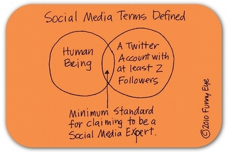 12 traits of a true social media 'expert' | What Surrounds You | Scoop.it