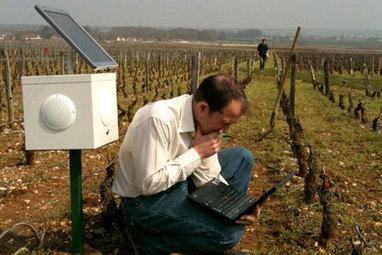 Ces paysans français soignent leurs champs en musique | écologie et nature | Scoop.it