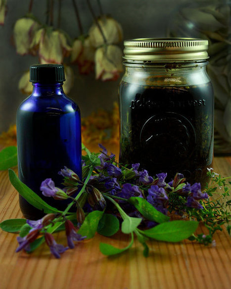 Herbal Liniments « The Mountain Rose Blog | Herbs for life | Scoop.it