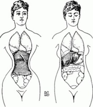 What If Everything You Knew About The Corset Was Wrong? | Lingerie Love | Scoop.it