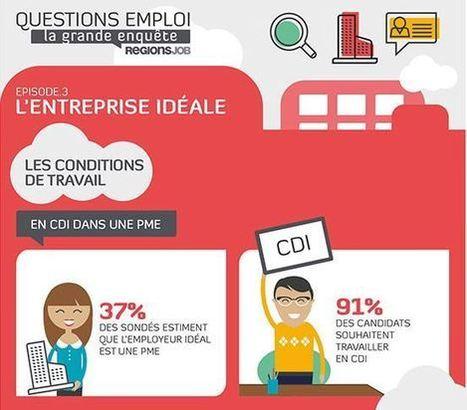 Infographie : l'entreprise idéale en 2013 - blog-emploi.com   Entreprendre batir Durable   Scoop.it