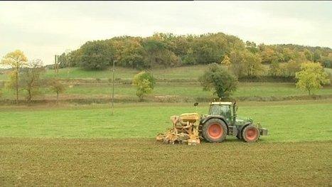 Pourquoi les agriculteurs manifestent à Castelnaudary dans l'Aude ? - France 3 Languedoc-Roussillon   Actus en LR   Scoop.it