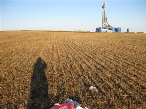 Livestock falling ill in fracking regions | environmental matters, self sufficiency and health | Scoop.it