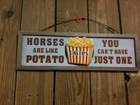 Remix: Top 20 reasons why horses are NOT like potato chips | Ireland Travel | Scoop.it