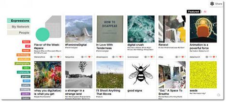 NewHive, una red social para expresarnos a través de pizarras virtuales | Pedalogica: educación y TIC | Scoop.it