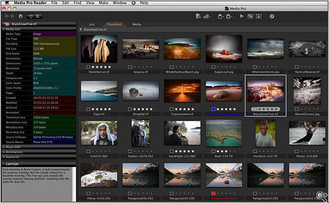 Phase One launches Media Pro asset management tool | capture one | Scoop.it