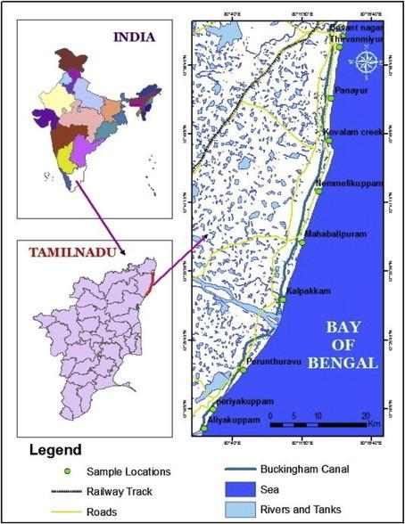 Heavy mineral distribution and geochemical studies of coastal sediments between Besant Nagar and Marakkanam, Tamil Nadu, India   Nuclear Physics   Scoop.it