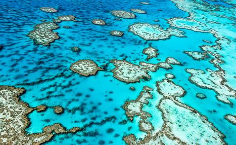 Comment le #changement #climatique affecte-t-il les #océans ? #DD | RSE et Développement Durable | Scoop.it
