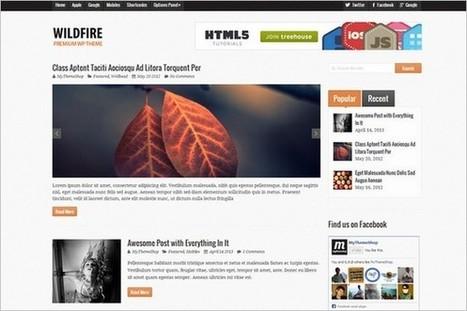 Wildfire WordPress Magazine Theme - WP Daily Themes | Free & Premium WordPress Themes | Scoop.it