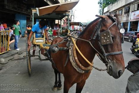 PhotoWalk: Cebu City | Philippine Travel | Scoop.it
