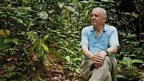 David Attenborough's life lessons | I love my world - natural outdoor play | Scoop.it