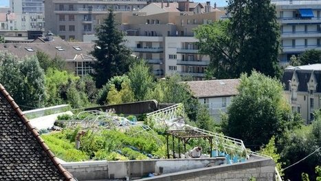 ferme urbaine parisienne | Ferme urbaine | Scoop.it