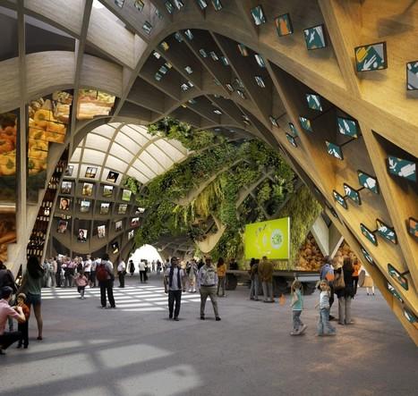 Le Pavillon de France à l'Exposition universelle de Milan 2015: une prouesse technique en bois éco-responsable | anoribois | Scoop.it