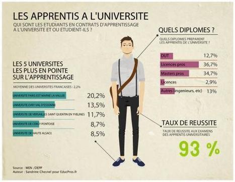 Apprentissage : le palmarès des universités qui en font le plus - Enquête sur Educpros | les spécificités de l'apprentissage appliqués au monde de l'enseignement supérieur | Scoop.it