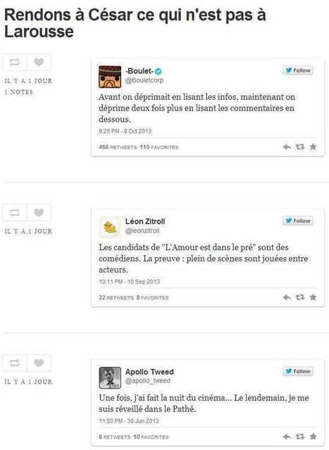 Le Tumblr des tweets que Larousse voulait publier | Les Infos de Ballajack | Au fil du Web | Scoop.it