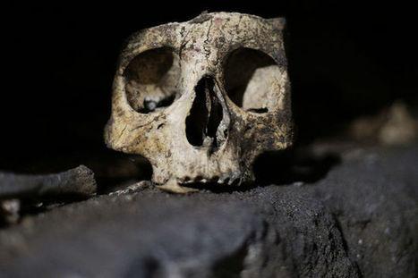Les massacres de masse avaient déjà lieu à la préhistoire | Aux origines | Scoop.it