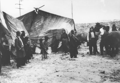 Documentation on the Persecution of Roma | Resources to support Film study of Into the West | Scoop.it