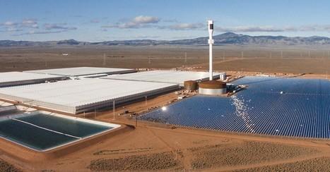Une ferme dans le désert fait pousser 17 000 tonnes de nourriture sans sol - Planetes360 | Les déserts dans le monde | Scoop.it