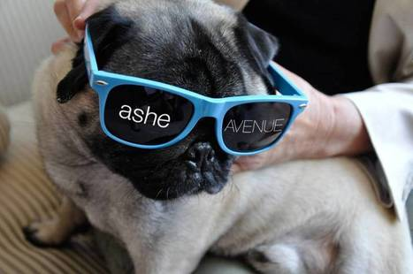 AOL acquires web development company AsheAvenue | Internet of Things - Company and Research Focus | Scoop.it