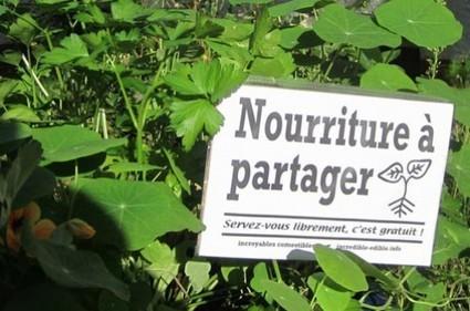 Plantez et mangez la ville, l'incroyable révolution | Agriculture Urbaine et gouvernance alimentaire | Scoop.it
