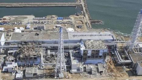 Fukushima : de la radioactivité décelée sur le littoral canadien | Japan Tsunami | Scoop.it