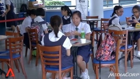 Niche programmes in schools to be expanded - Channel News Asia | singapore issues | Scoop.it