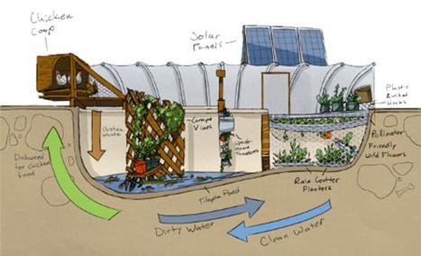 Garden Pool Sustainable Food Production - Natural Building Blog | Maisons éco | Scoop.it