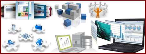 A customized ERP software is used by many software development firms today | Software Development Companies In India | Scoop.it