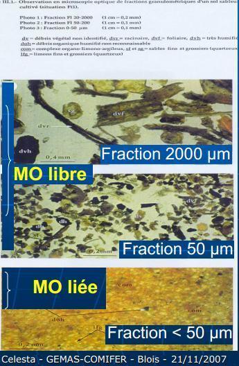 Qualité des M.O. des sols : une nouvelle génération d'analyses | Les fractions de la MO | Scoop.it