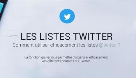 Optimiser votre veille grâce aux listes Twitter en une infographie | La Plateforme des Commerciaux Indépendants | Scoop.it