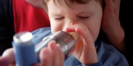 Quatre millions d'asthmatiques en France, un chiffre sous-estimé | Health & environment | Scoop.it