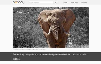 Pixabay: banco de imágenes gratuitas para tu blog | Chica Blogger | Las TIC y la Educación | Scoop.it