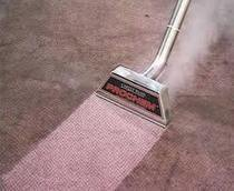 Keep the carpet cleaner towards the Professionals   carpet cleaning seattle   Scoop.it