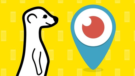 Twitter Is Pushing Celebrities And Publishers To Stop UsingMeerkat   Social Media, Marketing, Blogging & Writing   Scoop.it