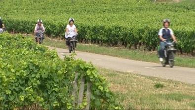 Le vignoble de Bourgogne... en solex | Revue de Web par ClC | Scoop.it