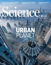 Cities are the Future | Complex Systems and X-Events | Scoop.it