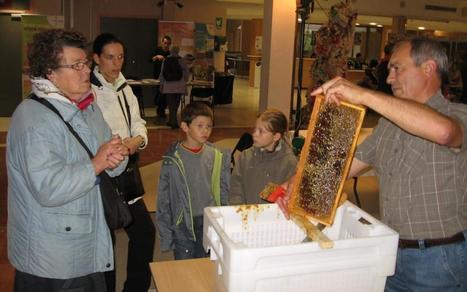 Engagement citoyen pour la Fête du miel | Ressources & Documentation | Scoop.it