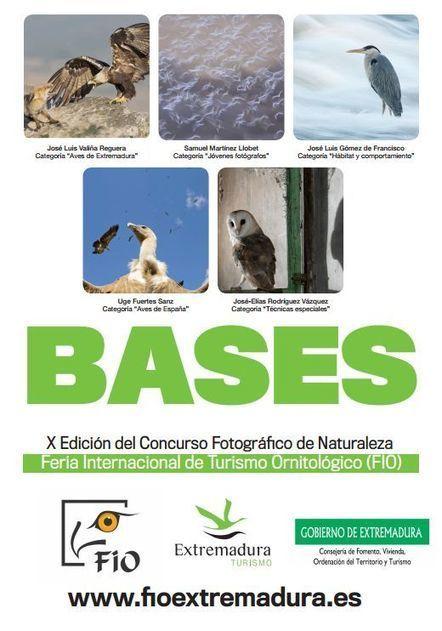FIO: Concurso fotográfico 2015.Publicadas las bases del concurso fotográfico 'Las aves silvestres | GeoActiva Turismo de Aventura | Scoop.it